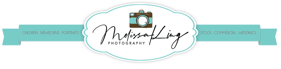 Melissa King – Stock Photographer logo